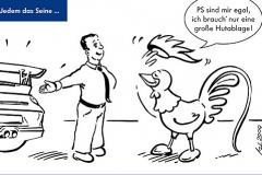 Hahn_Gallo_Cartoon_2-2009_01.indd
