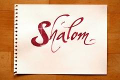 Shalom_Martin_Haug_800px