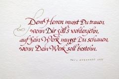 Dem_Herren_Martin_Haug_800px