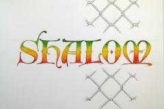 Shalom_Machendrahtzaun_HQ