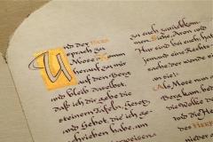 Goldene_Kalb_Kalligrafie_Martin_Haug_ - 25