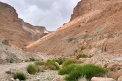 Wadi unterhalb Massadas