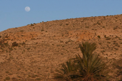Mond über der Wüste